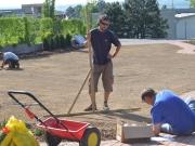 úprava terénu pred výsevom - hrabaním, nastavenie závlah