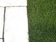 lem trávnika a dlažby - najvhodnejší je v jednej rovine kôli koseniu