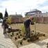 Ratnovce_výsadba rastlín
